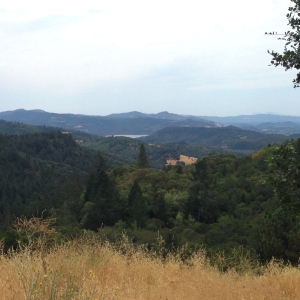 Howell Mountain Overlook