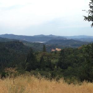 Howell Mountain Overlook